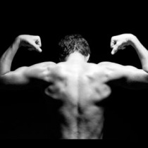 Image courteousy of http://www.muscleprogram.com/