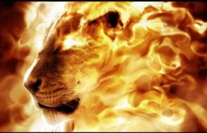 consuming-fire lion of Judah