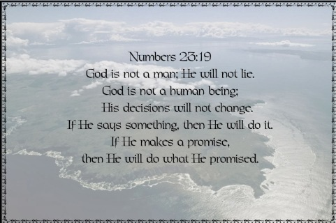 Numbers23.19